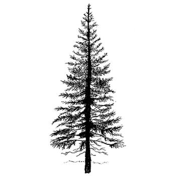 Lavinia Stamps - Fir Tree 1